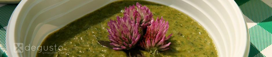 Dzika zupa zupa degusto - przepisy smaczne i proste